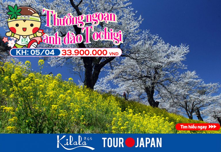 """Chơi thả ga"" với Tour du lịch Tochigi!"