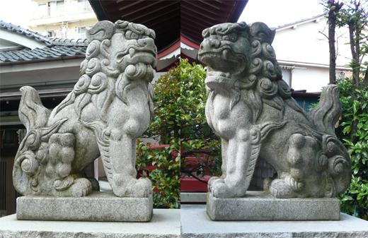 Tại sao Đền ở Nhật thường xuất hiện hai bức tượng này? Thực ra đó là hai loài khác nhau…
