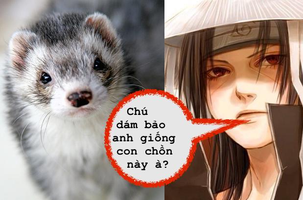 """Đục khoét tuổi thơ: Khi tên người hùng của bạn trong Naruto Shippuden không hề """"ngầu"""" như bạn vẫn nghĩ ?"""
