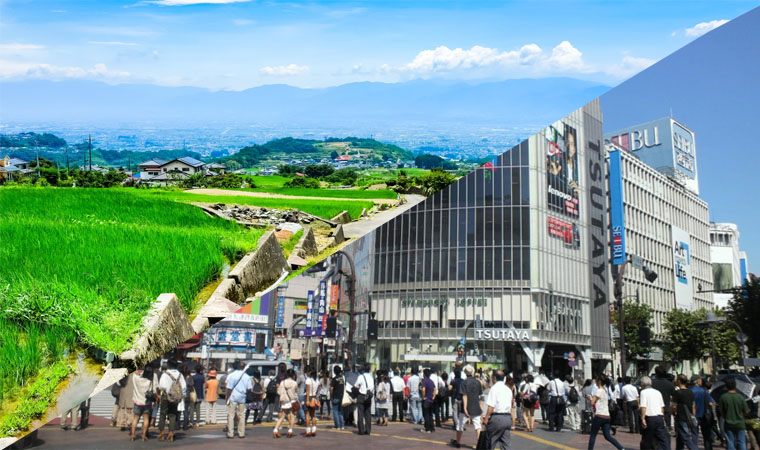 Những giai thoại cười ra nước mắt về sự khác biệt của nông thôn và thành thị Nhật Bản
