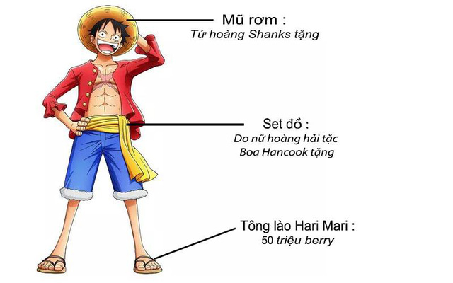 """Hãy để băng Mũ Rơm trong One Piece cho bạn biết, thế nào mới gọi là """"Rich Kid"""" thực sự"""