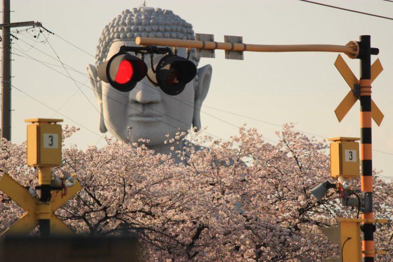 """Dù nghiêm túc đến đâu, bạn cũng sẽ bật cười vì thần thái """"ngút trời"""" của pho Tượng Phật cao 18m này"""
