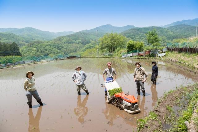 """Những sự thật """"phũ phàng"""" về nông thôn Nhật Bản mà dân thành thị luôn tưởng bở"""