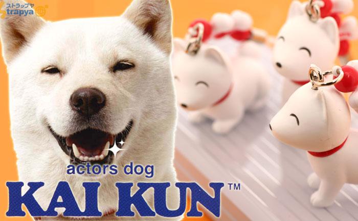 """Ông bố """"Chó"""" – gương mặt đại diện của Softbank Nhật Bản bất ngờ qua đời, hưởng thọ… 16 tuổi"""