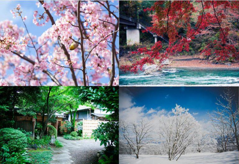 """Chuyến xe kỷ niệm mang tên """"Nhật Bản"""" (Phần 2)"""