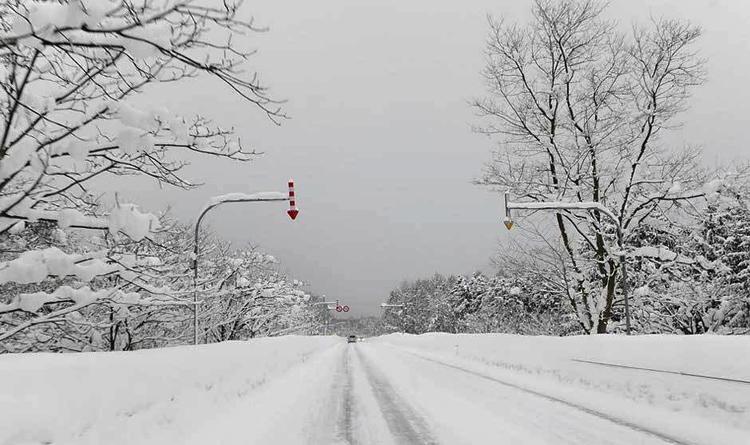 Tuyết rơi mùa hè là có thật, không tin đến Hokkaido mà xem….