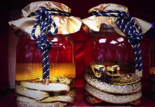 [Habushu] Loại rượu được làm từ rắn độc truyền thống của Nhật Bản