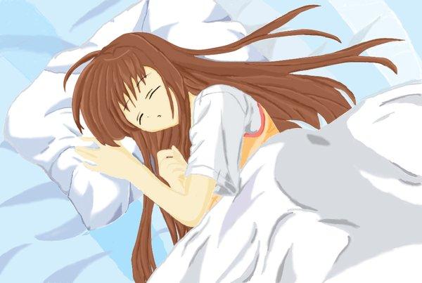 Chỉ với việc đi ngủ, người Nhật đã có rất nhiều điều thú vị để bạn học hỏi