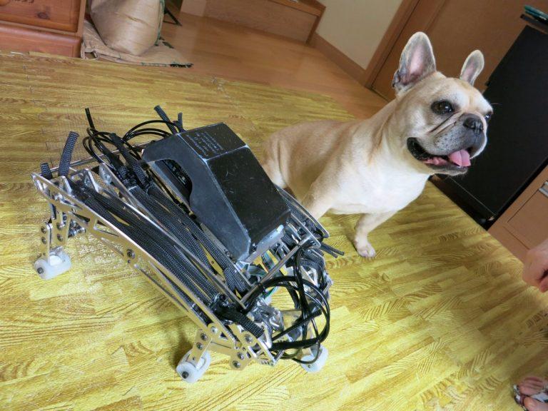 Hành động dễ thương giống thật đến kinh ngạc đốn tim người xem của một chú chó Robot
