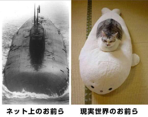 Đây là cách mà mạng xã hội đã thay đổi chúng ta – Japan Version