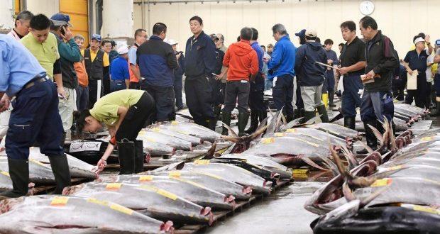 Vĩnh biệt Tsukiji! Chợ cá nổi tiếng thế giới của Tokyo bắt đầu sang trang mới
