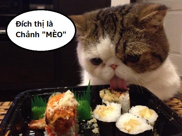 Nhìn vào cách ăn Sushi, dự đoán tính cách của bạn