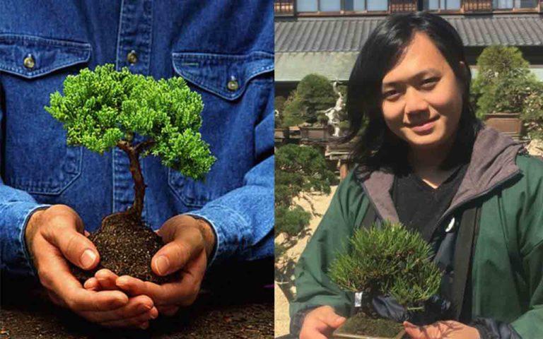 """Bị trộm mất cây Bonsai 400 năm tuổi giá trị, chủ vườn lên mạng nhắn nhủ tên trộm """"nhớ tưới nước cho cây"""""""