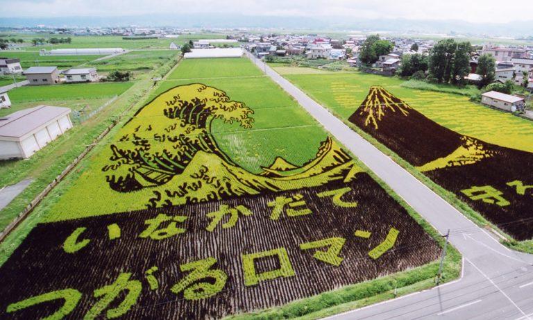 """Không chỉ là nghệ thuật – Chiến dịch Marketing """"tài tình"""" đằng sau những bức tranh trên đồng ở Nhật"""