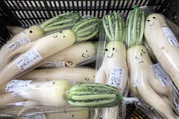 """Ý tưởng có 1-0-2 của nông dân Nhật Bản biến củ cải """"không ai thèm"""" thành củ cải triệu người mê"""