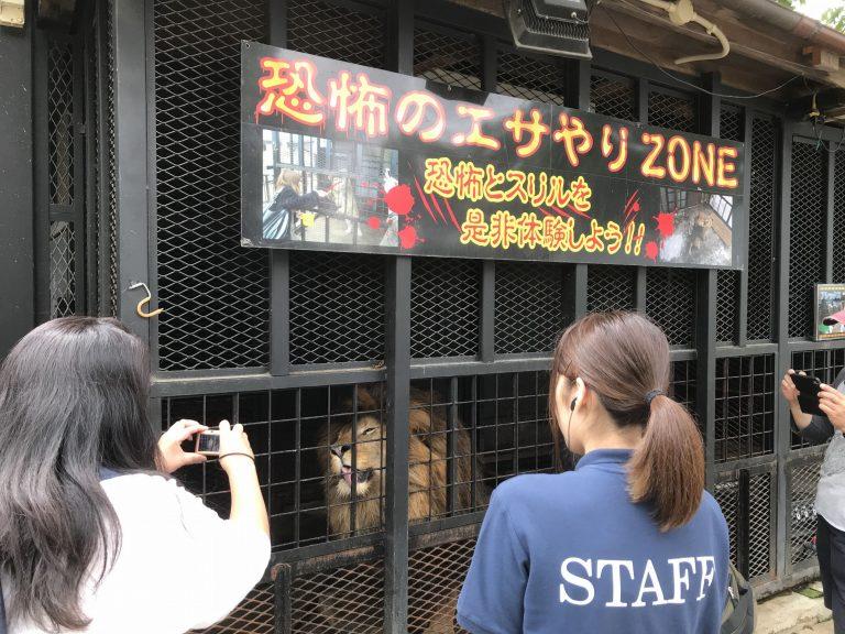 ဂျပန်နိုင်ငံရဲ့ ကြောက်စရာအကောင်းဆုံး တိရိစ္ဆာန်ရုံ