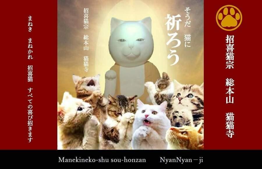 Ở Nhật có ngôi Chùa thờ Mèo đã đành, đến trụ trì cũng là Mèo?