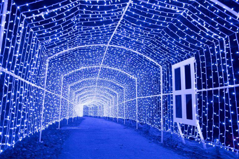 6 triệu bóng đèn bừng sáng tại lễ hội thắp đèn lớn nhất Kanto