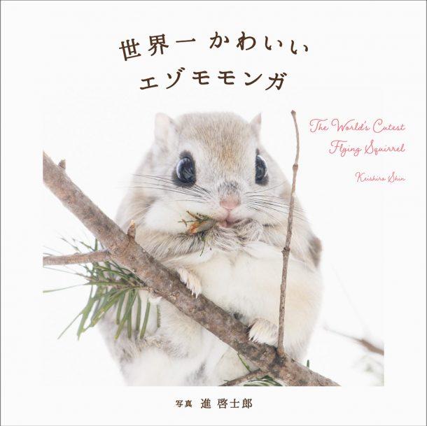Nhật Bản có những con vật đáng yêu đến vô thực như thế này, bảo sao chả là xứ sở Kawaii