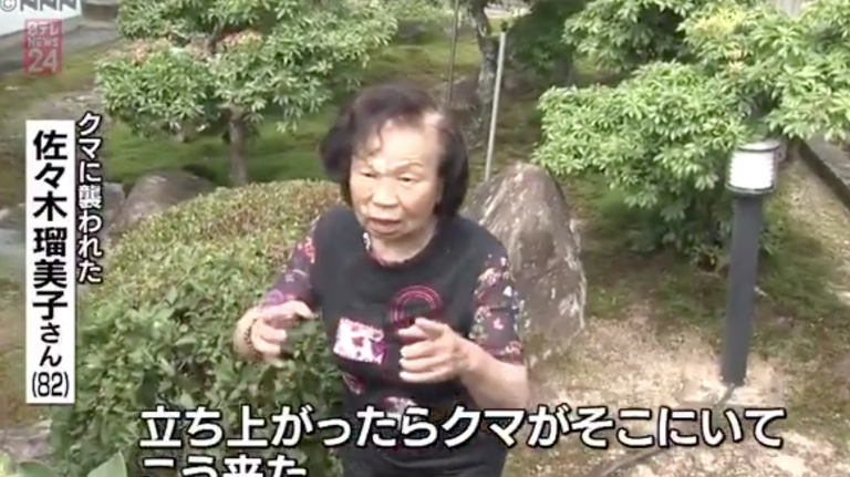 """Bà lão 82 tuổi siêu """"gắt"""" – """"đánh bay"""" luôn chú gấu đen chuẩn bị tấn công mình"""