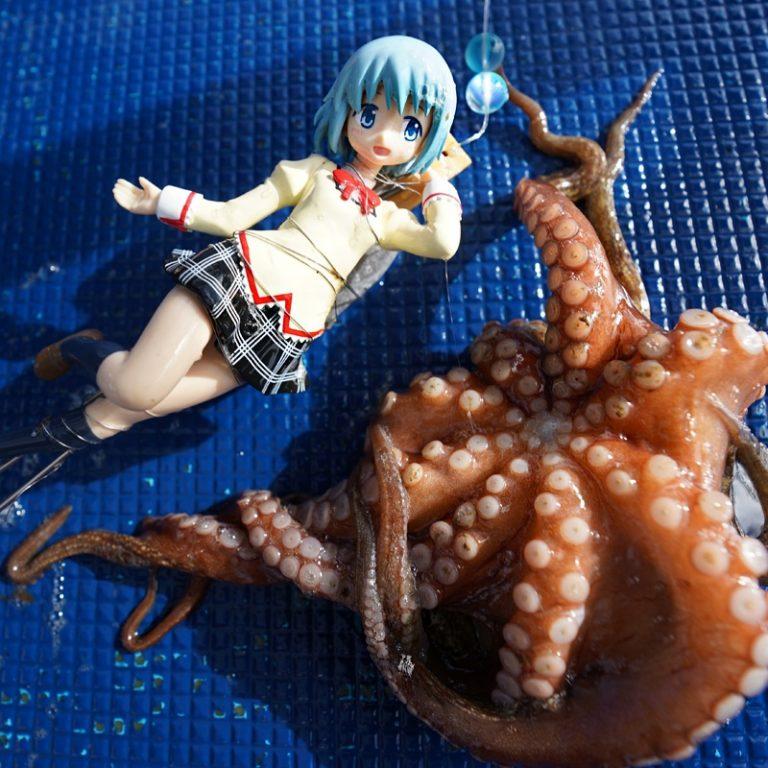 YouTuber người Nhật đi câu cá bằng mô hình Loli, phát hiện động vật biển háo sắc nhất