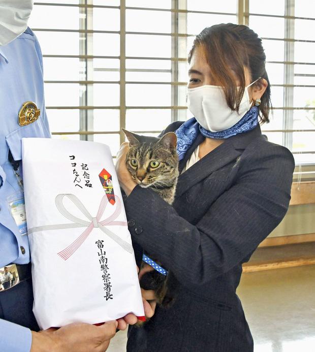 Chú mèo được cảnh sát Nhật vinh danh vì giải cứu một người đàn ông