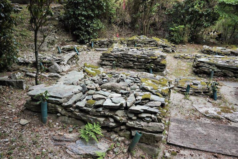Phần mộ vô danh từ thảm kịch 800 năm về trước