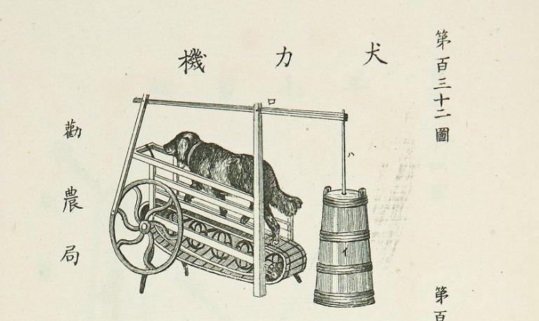 Nhật Bản đã từng sử dụng máy biến sức mạnh của chó thành bơ?