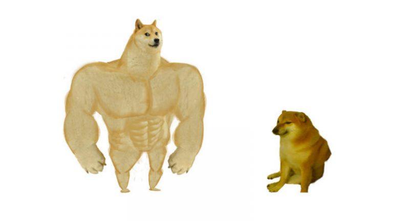"""Chân dung chó Nhật trước khi """"biến"""" thành thú cưng"""