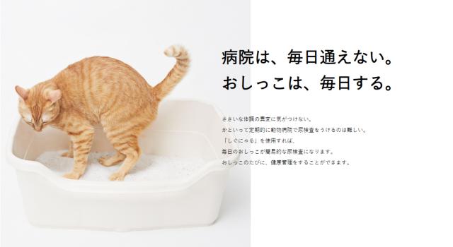 """Cát mèo đổi màu mới từ Nhật Bản, """"khám"""" sức khoẻ cho mèo cưng mỗi ngày"""