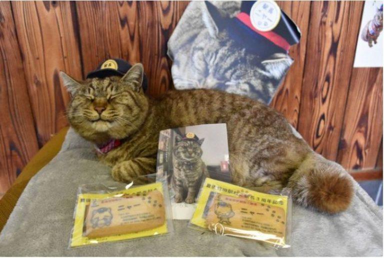 Nhật Bản kỷ niệm 3 năm nhậm chức của chú Mèo trưởng ga Nya
