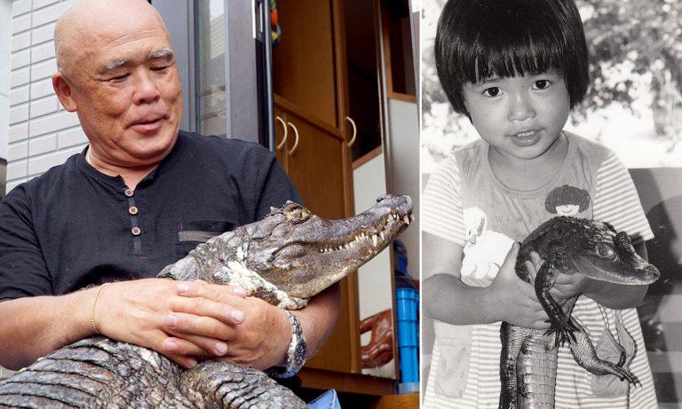 """Tình bạn """"không thể bị chia cắt"""" của người đàn ông Nhật Bản và…cá Sấu khổng lồ"""