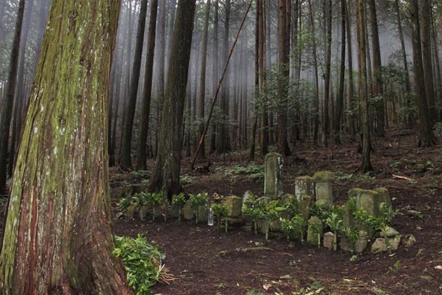 """Lời nguyền rủa của một ngôi làng mà 90% dân cư gần như """"bốc hơi"""" – Từ 80 hộ gia đình cho đến 30 phần mộ trơ trọi"""