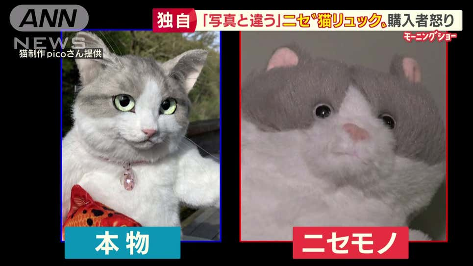 Ba lô mèo siêu thực từng hot trend bên Nhật đã có hàng nhái từ Trung Quốc