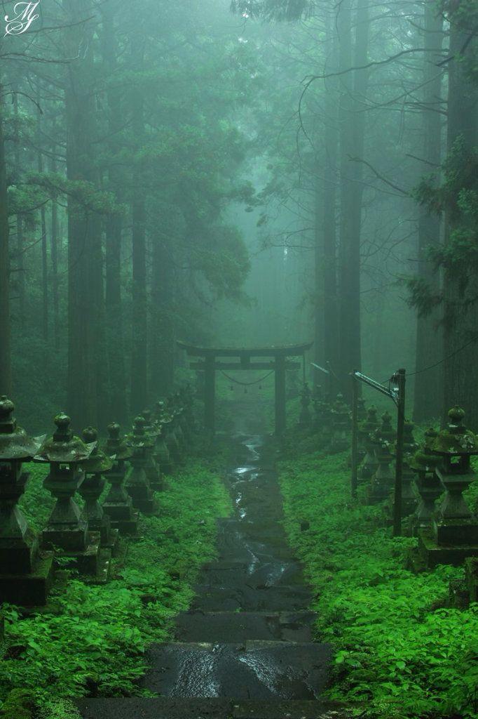 Tiếng Nhật có tận 400 từ vựng để chỉ mưa – Bạn có chắc là mình biết những từ chỉ mưa phổ biến này?
