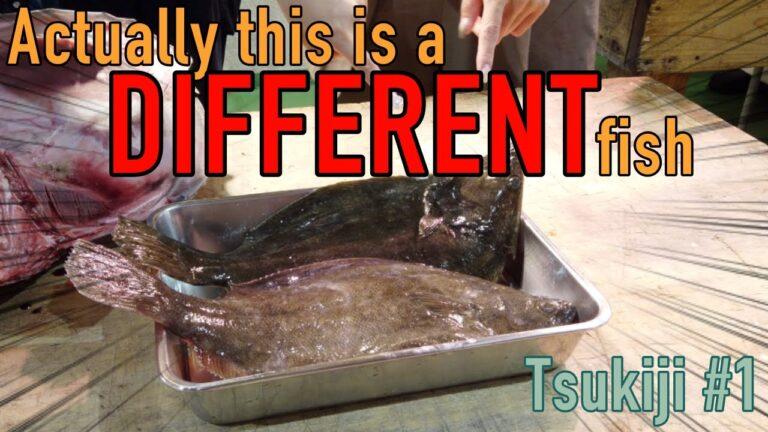 Học cách phân biệt hai loại cá phổ biến ở Nhật Bản tại khu chợ Tsukiji